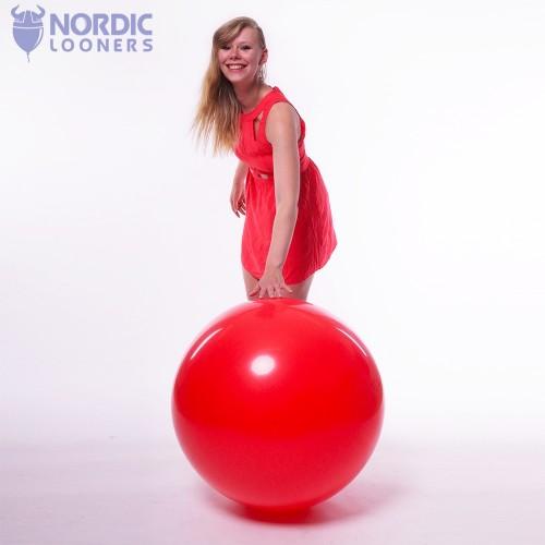 "Qualatex 36"" Standard #41996 31,62 DKK Nordic Looners"
